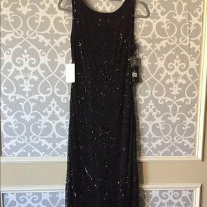 NWT Pissaro Nights gorgeous beaded mesh gown Sz 4